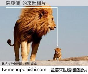 陳瓊儀 來世的未來相片