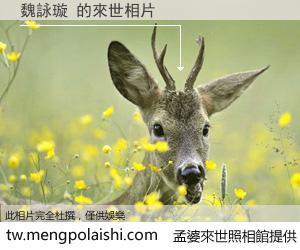 魏詠璇 來世的未來相片